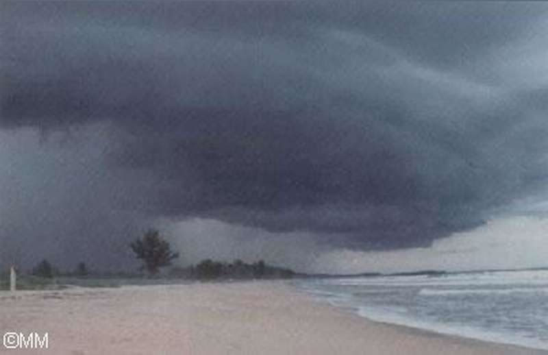 Galería de Nubes/Tormenta.jpg